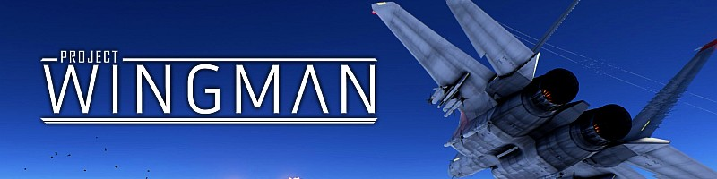 project wingman banner